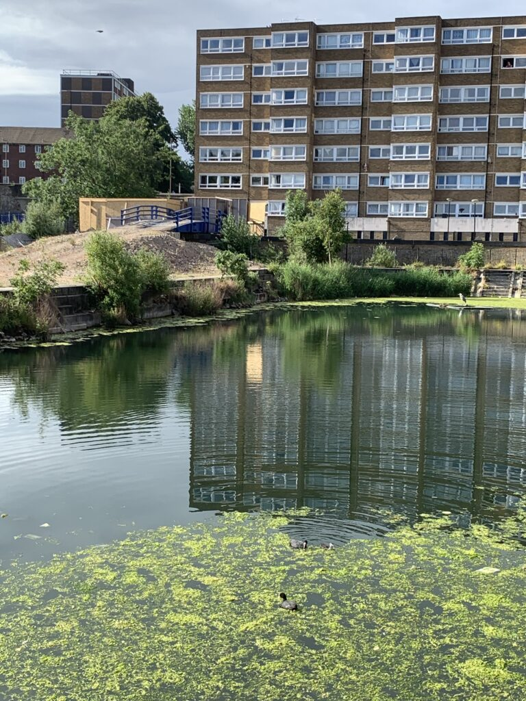 The remains of the Woolwich Acquatic Centre. Complete with Heron
